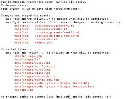docs/screenshots/git_error.png