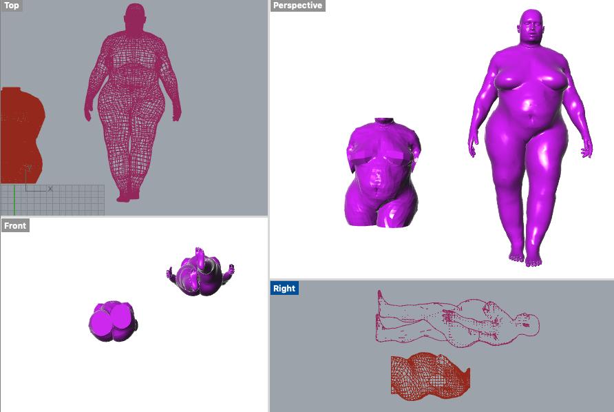 Rhino-screenshot